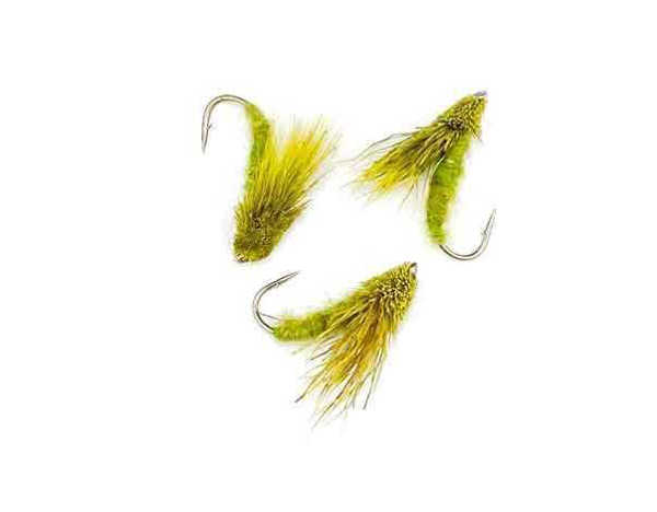 Bild på Streaking Caddis Olive #12
