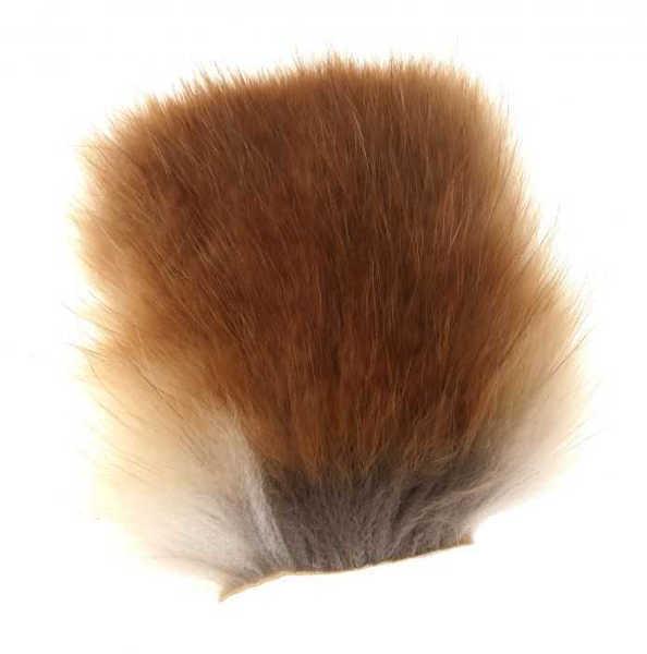 Bild på Red Fox Body
