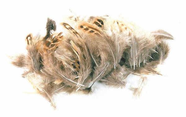 Bild på Loose Partridge Natural